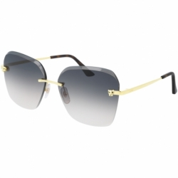 Cartier Ct0147s 002 Ag