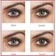 FreshLook 1-Day - 10 Kontaktlinsen
